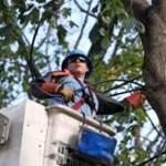 Con Edison Wins Reliability Award