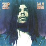 "Skip Marley Releases New Single ""Calm Down"" on Island Records"