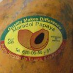 Multi-State Salmonella Outbreak Associated with Yellow Maradol Papayas