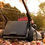 Checklist: Do This Fall Yard Work Now and You Will Reap Benefits Next Spring